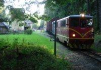 Shunting Mixed train at Strizovice