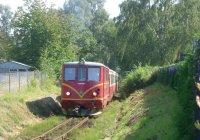 Obratan bound train arrives Kamenice nad Lipou