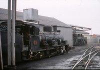 NG steam loco 4